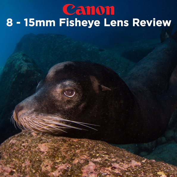 Canon 8-15mm Fisheye Lens Review by Todd Winner