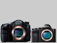 sony camera, sony cameras, sony dslr, sony digital camera, sony