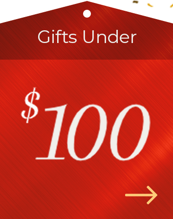 Holiday Gift Guide $100