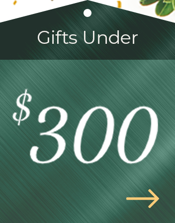 Holiday Gift Guide $300