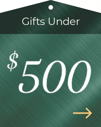 Holiday Gift Guide $500
