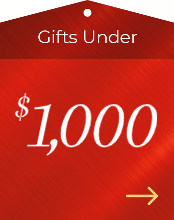 Holiday Gift Guide $1000