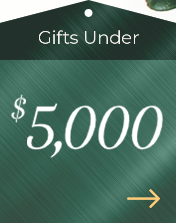 Holiday Gift Guide $5000