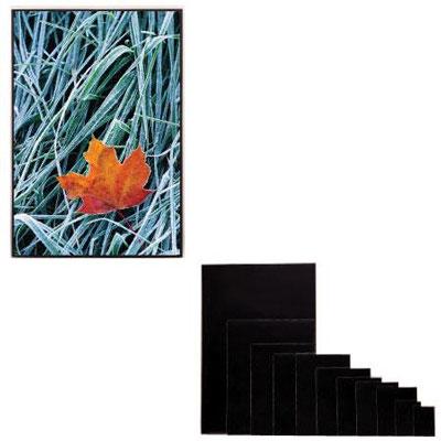 8 x 10 Art Profolio ImagEnvelope, Poly-Glass Storage Envelope with Board