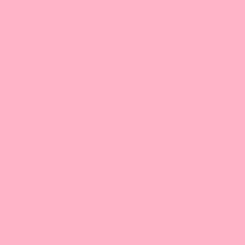 Gel Sheet 110 Middle Rose Lighting Filter 21x24