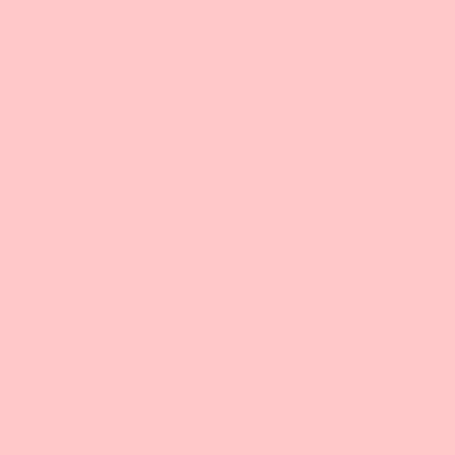 Gel Sheet 153 Pale Salmon Lighting Filter 21x24