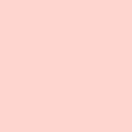 Gel Sheet 154 Pale Rose Lighting Filter 21x24