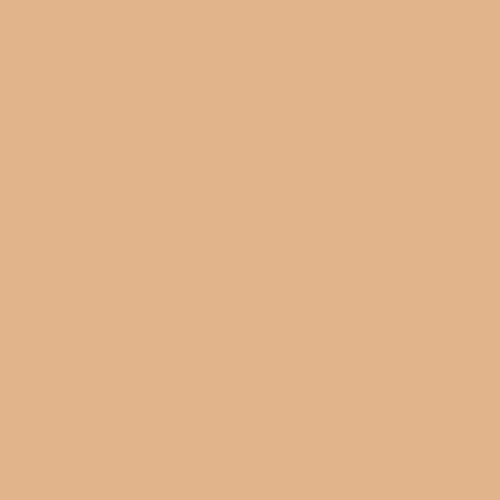 Gel Sheet 156 Chocolate Lighting Filter 21x24