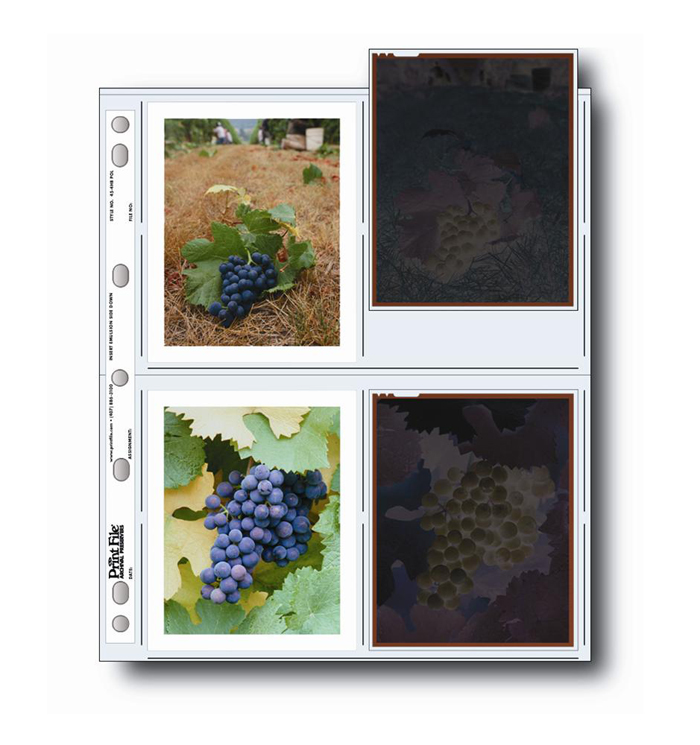 Image of Print File 45-4BPOL Negative Pages (Pack of 100)
