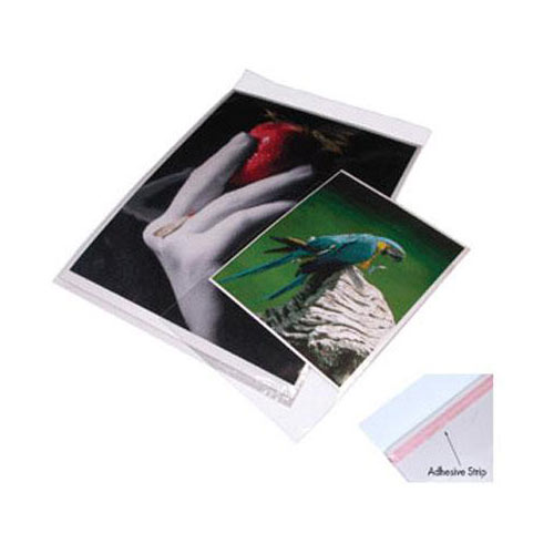 13.25 x 19.25 In. Crystal Clear Bags Package of 100