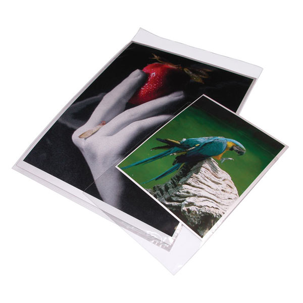 5x7 In. Clear Bags Package of 100