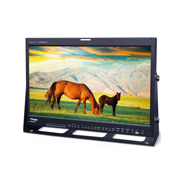 LEM-250A 24.5 1080p FHD 10-bit Reference OLED Monitor