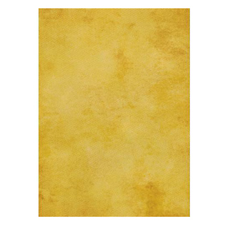 10x10' Infinity Hand Painted Muslin Background (Roma)
