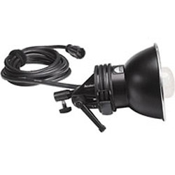 Pro 7 Flash Head for D4 and Pro 7 Series Systems