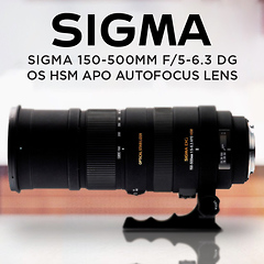 Lens Review: The Sigma 150-500mm F5-6.3 Zoom Lens