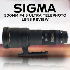 Sigma 500mm f4.5 Ultra Telephoto Lens Review by Anthony Friedkin