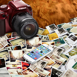 How to Organize Your Digital Photos in 5 Easy Steps