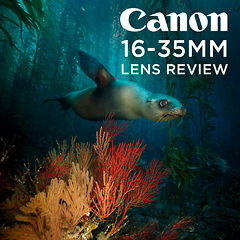 First Impressions Canon 16-35mm f/4 Wide Angle Zoom by Todd Winner