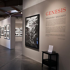 World-Renowned Photographer Sebastião Salgado Unveils 'Genesis' Exhibit At Peter Fetterman Gallery