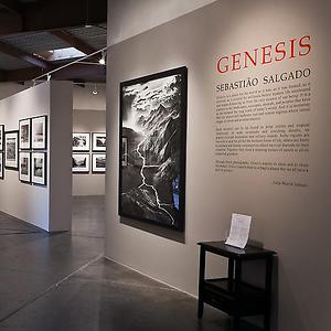 World-Renowned Photographer Sebastião Salgado Unveils 'Genesis' Exhibit At Peter Fetterman Gallery