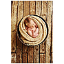 Weathered Planks Faux Floor Mat (54 x 72 inch) Thumbnail 1