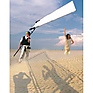 Sun-Swatter Big 6' x 8' 2/3 Translucent with Frame, Screen, Shoulder Bag.