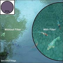 B+W 77mm Circular Polarizer Filter