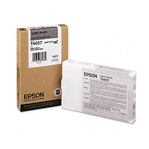 Epson Light Black UltraChrome K3 110ml Ink Cartridge