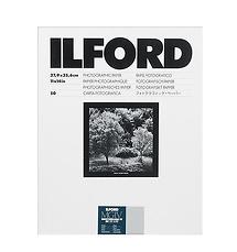 Ilford 11 x 14
