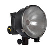DP 1000 Watt Focusing Flood Light (120-240V AC)
