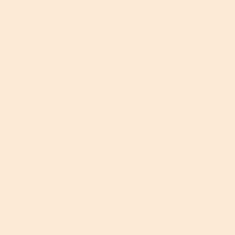 Lee Filters Gel Sheet 206 Quarter C.T. Orange Lighting Filter 21x24