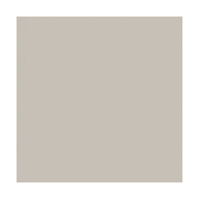 Widetone Seamless Background Paper (#12 Studio Gray, 107 In. x 36 ft.) Image 0
