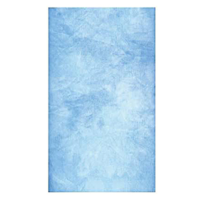 9 x 20 ft. Canvas Infinity Hand Painted Background (Blue Skies) Image 0