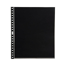Pina Zangaro 11 x 8.5in. Polypropylene Express Sheet Protectors, 10-Pack