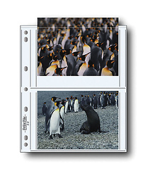 Print File 57-4P 5x7in. Photo Pages (100 pack)