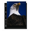 S-Series 8 x 10in. Black Album Pages - 25 pages