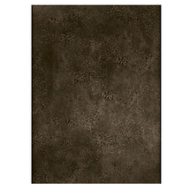 Savage 10x10 ft. Infinity Hand Painted Muslin Background (Bogata)