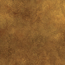 Savage 10x20' Infinity Hand Painted Muslin Background (Petra)
