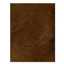 Savage 10x20' Infinity Hand Painted Muslin Background (Verona)