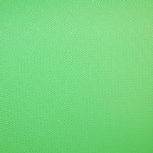 Savage 10 x 20' Infinity Vinyl Background (Chroma Green)