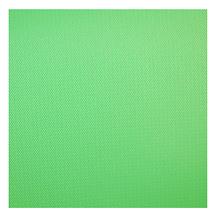 Savage 9 x 20' Infinity Vinyl Background (Chroma Green)