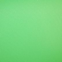 Savage 9 x 10' Infinity Vinyl Background (Chroma Green)