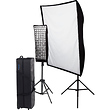 Spiderlite TD6 Perfect Portrait 2-Light Deluxe Kit