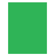 Savage 10x10 ft. Infinity Lint Free ProCloth Background (ProChroma Green)