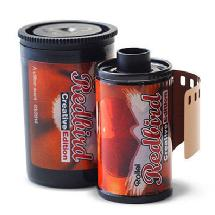 Rollei RedBird 400 Redscale Film - Single Roll