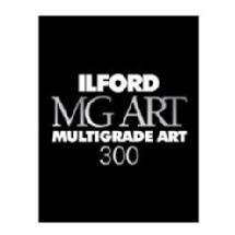Ilford 8 x 10