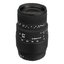 70-300mm f/4-5.6 DG Macro Lens for Canon Image 0