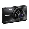 Sony DSC-W690 Cyber-shot Digital Camera (Black)