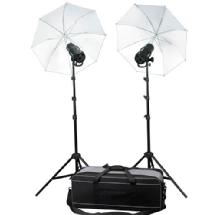 Profoto 901058 D1 Studio Kit 250/500