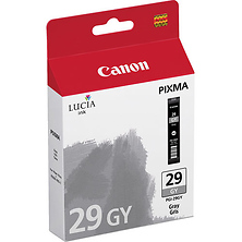 PGI-29 Gray Ink Cartridge Image 0